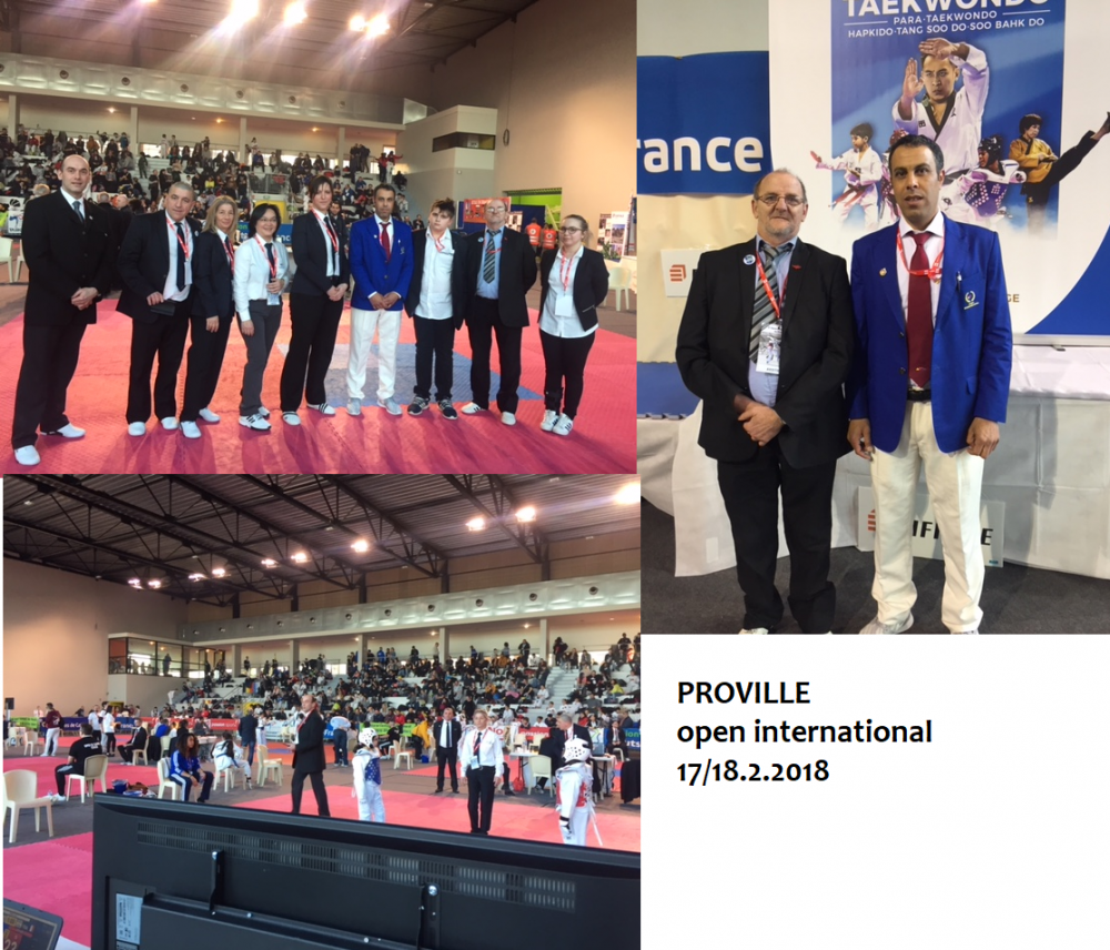 RESULTAT DE PROVILLE  open international  17/18.2.2018